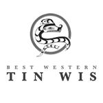 Tin Wis